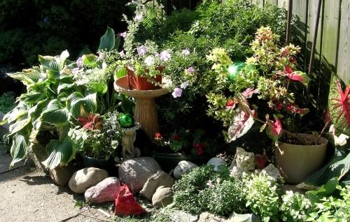 mel garden face horizontalx
